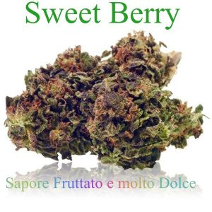 Sweet Berry 5g