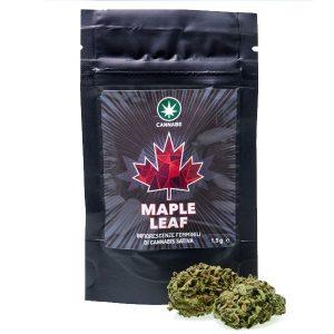 Maple leaf 3g