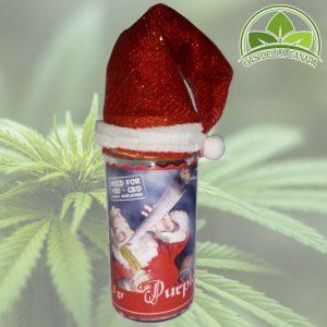 Christmas Purple-3g