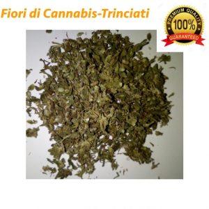 Fiori di Cannabis Trinciati-Qualità Garantita-40