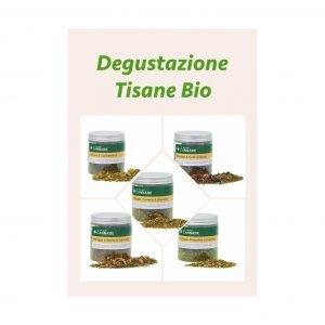 Degustazione Tisane Bio