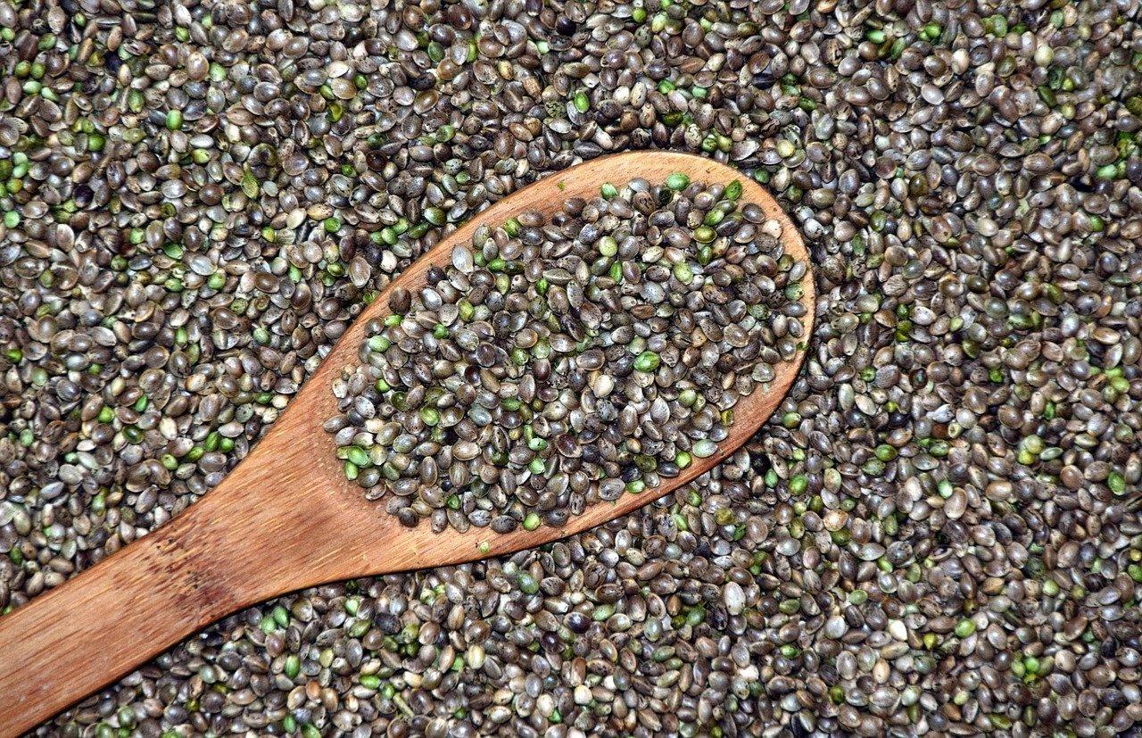 Differenza tra semi femminizzati e autofiorenti