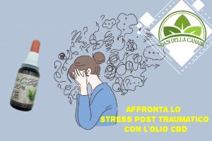 La canapa legale può essere un rimedio efficace nel mitigare gli effetti dello stress post traumatico sul comportamento delle persone e le reazioni a livello psicologico, allentando i ricordi angoscianti ricorrenti dopo il trauma grazie alla neutralizzazione che provocano i cannabinoidi nella trasmissione chimica tra i recettori coinvolti nei processi emozionali del cervello
