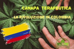 La Colombia vuole posizionarsi tra i primi nell'industria della canapa e diventare una potenza per quanto riguarda la coltivazione e produzione della pianta canapa sativa legale