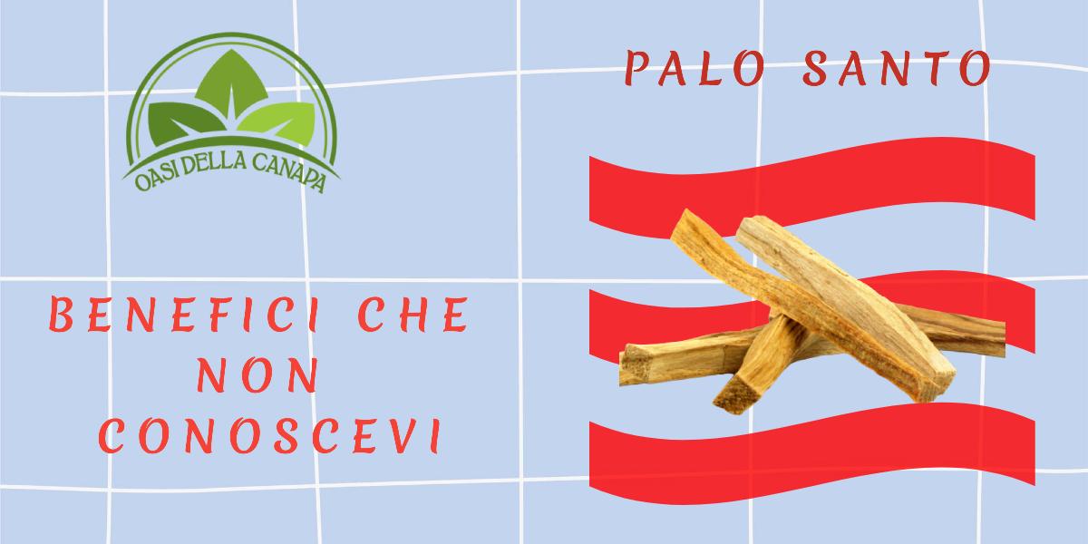 Benefici del Palo Santo Incenso che Non Conoscevi
