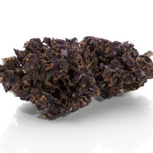 Purple Haze 0.2