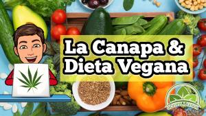 Alimenti vegani sul tavolo e omino di Oasi della Canapa con un laptop che ha come logo una foglia di canapa