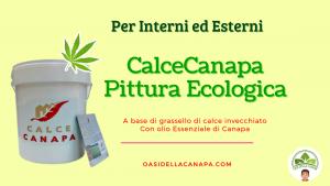 Calcecanapa Pittura Ecologica a base di canapa per interni ed esterni