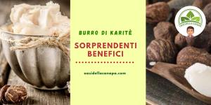 Il burro di karitè è apprezzato nel mondo della cosmesi per via delle sue preziosissime proprietà nutrienti, riparatrici, protettive, elasticizzanti, idratanti e antinfiammatorie