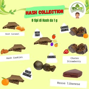 Hash Collection